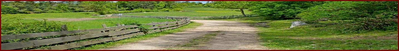 Demobild für einen Feldweg