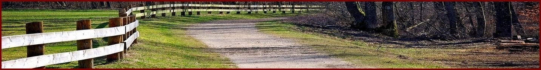 Demobild Waldweg mit Zaun